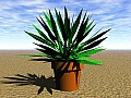 Plant 08