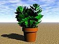 Plant 09