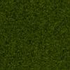 Grass 40