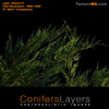 Conifer Branch 01