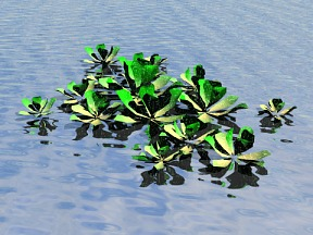 3D 3D Model Download Aquatic Plant 03