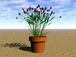 3D 3D Model Download Flower 09