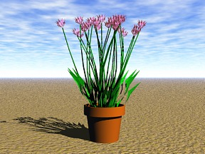 3D 3D Model Download Flower 11