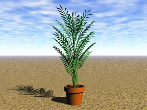 3D 3D Model Download Plant 11