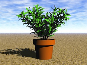 3D 3D Model Download Plant 13