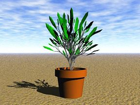 3D 3D Model Download Plant 16