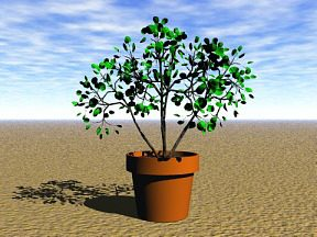 3D 3D Model Download Plant 15