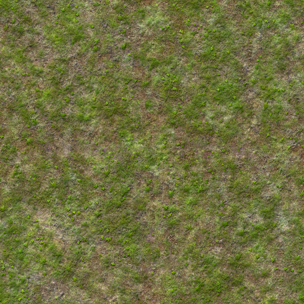 wild grass texture. Wild Grass Texture R