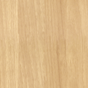 Indoor Wood 44 Texture